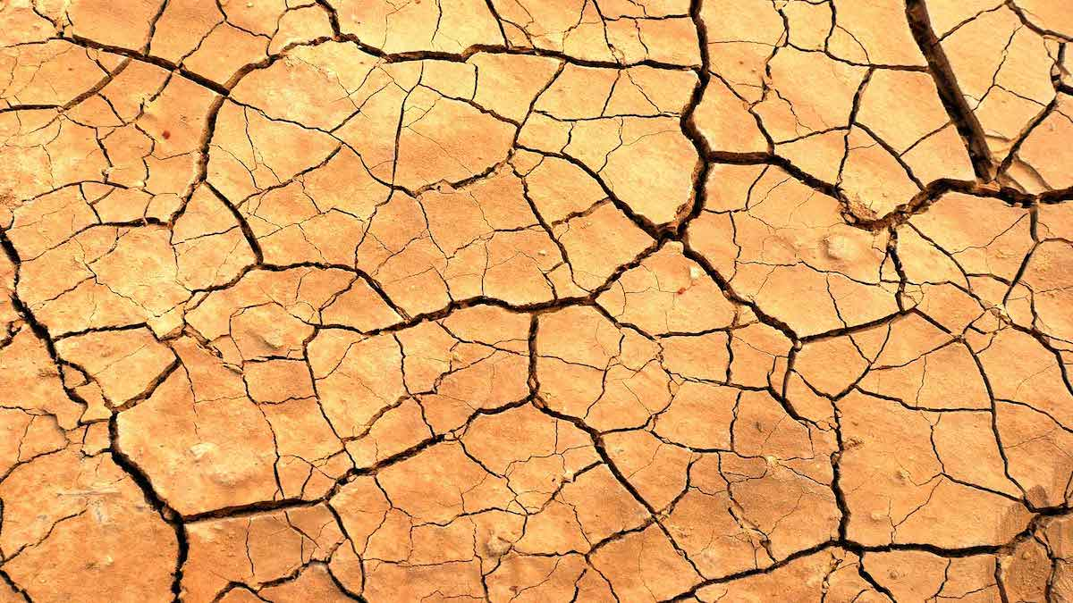 6 Common Causes Of Dry Skin